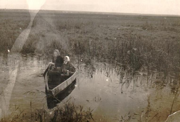 Старая река имза Лысковский район село Варганы моя Бабушка Лощилова Рима и тетя Галя