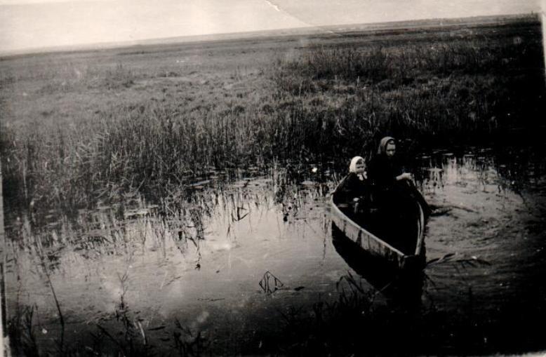 Старая река имза Лысковский район село Варганы