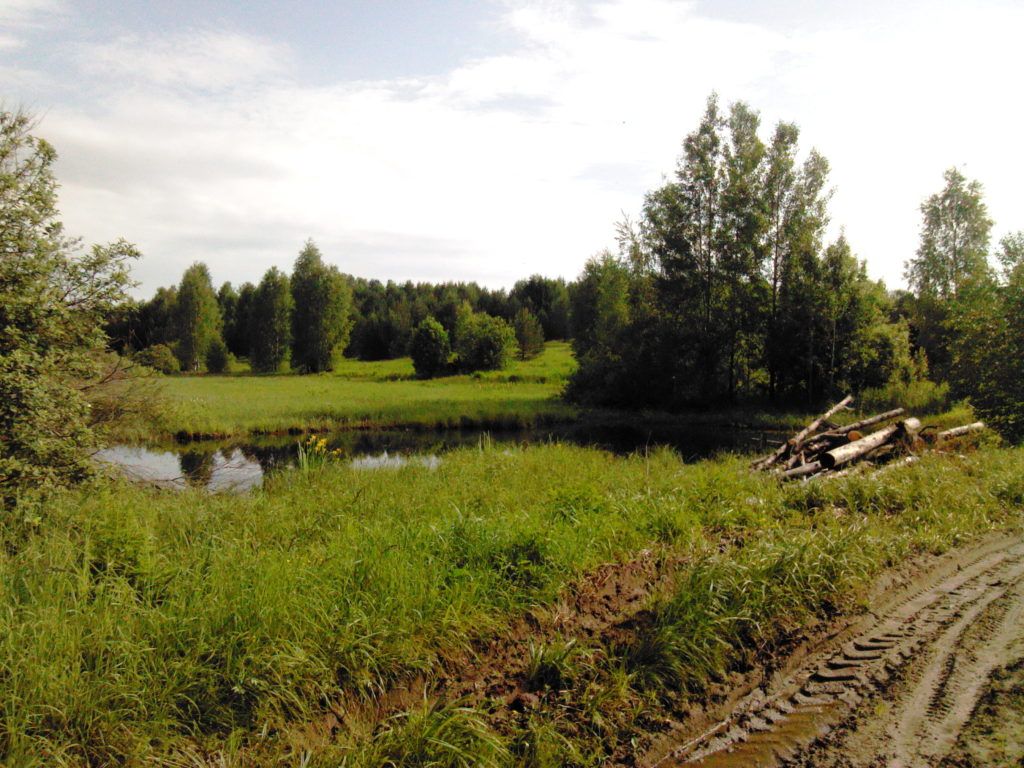 Мрасы. Нижегородская область.