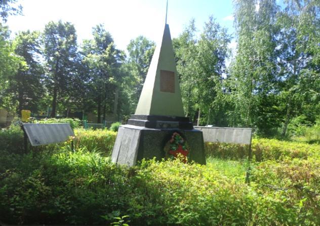 Памятник погибшим воинам. село Бронский Ватрас.