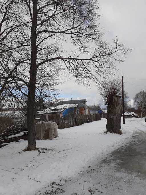 деревня Баранниково улица