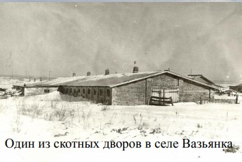 Скотный двор в селе Вазьянка.