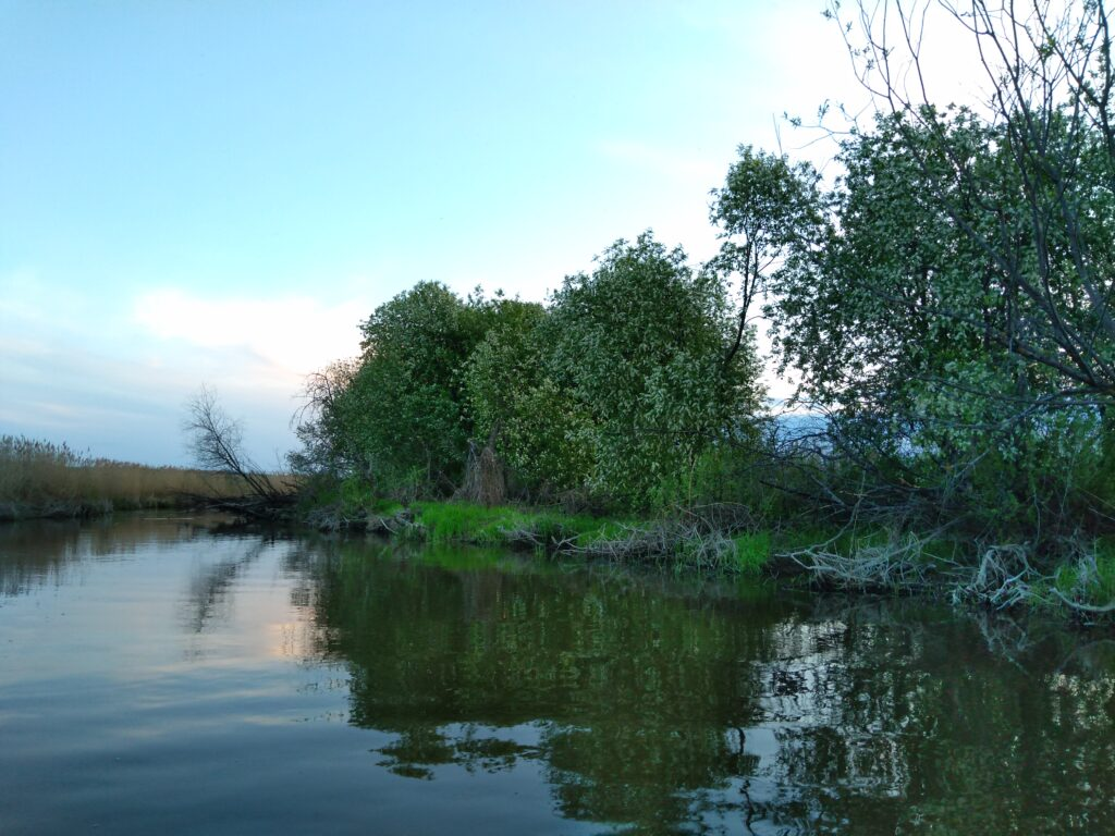 река Имза. Воротынский район.