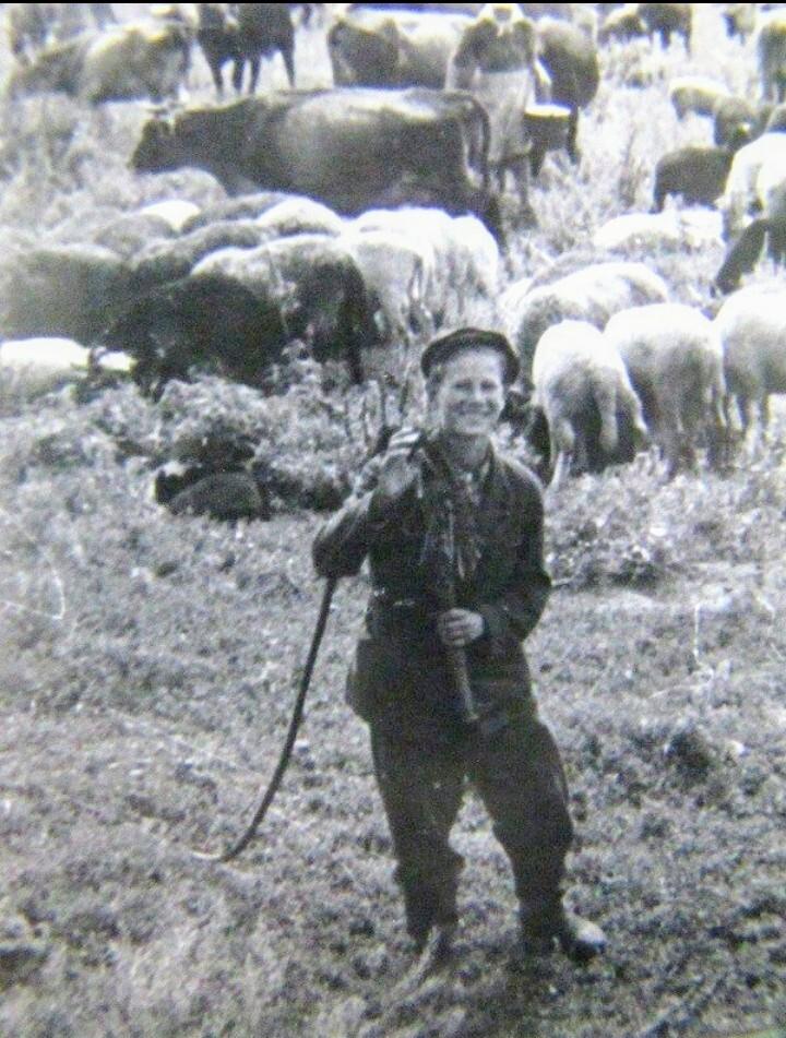 Островское. Княгинеский район. Пастух.